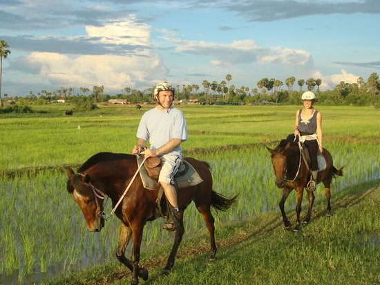 Horse riding in Siem Reap Countryside